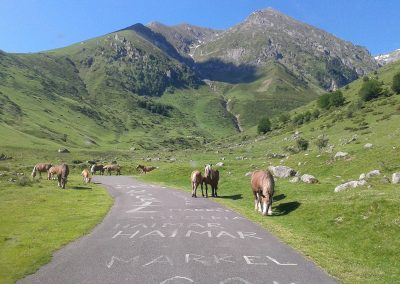 Pyrenees Cycling201414