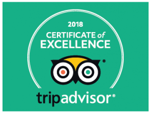 TripAdvisor Certificate of Excellence with owl logo