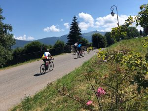 Cyclists on a mountain road