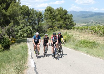 Cyclists in Provence countryside